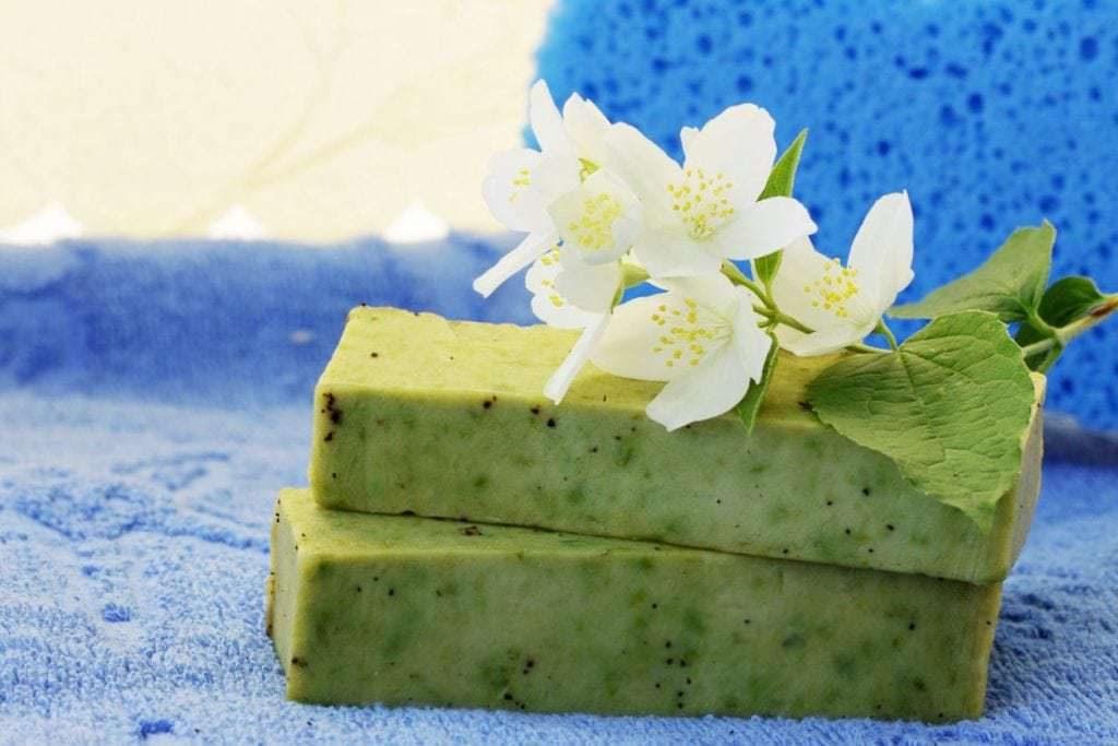 Productos de Aloe Vera, eficacia probada